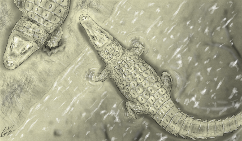 Two Cretaceous crocodyliforms (crocodile relatives) from Spain face off in the Lo Hueco swamp.