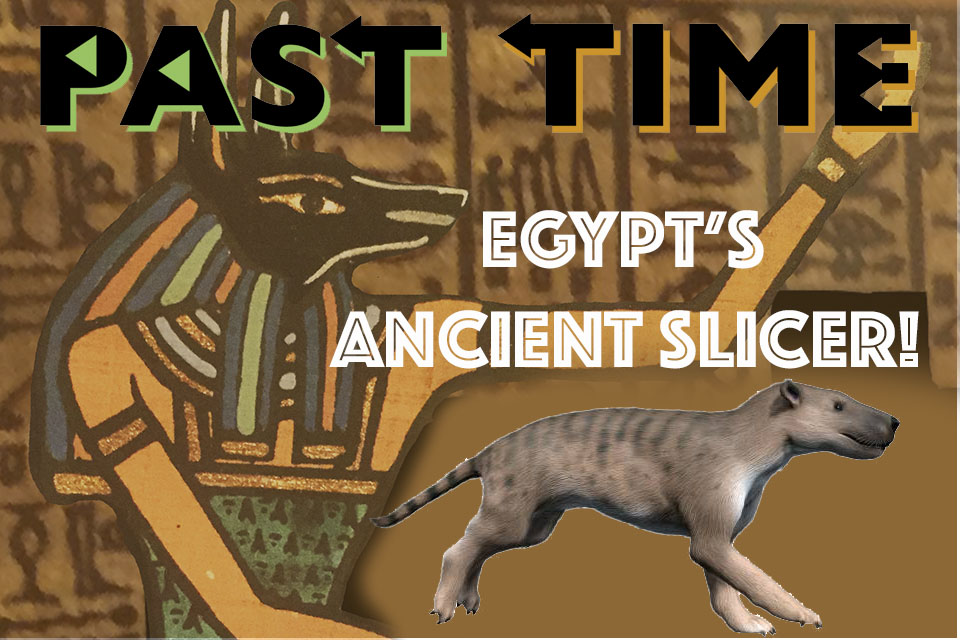 Episode 19: Masrasector—Egypt's Ancient Slicer!