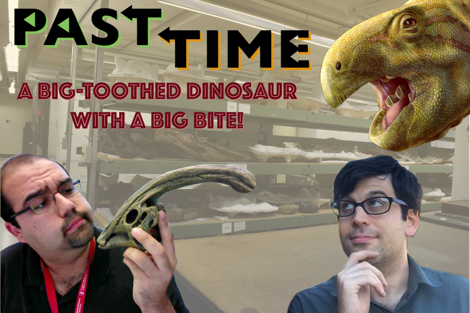 Episode 22: Matheronodon, a new dinosaur with a different kind of bite!