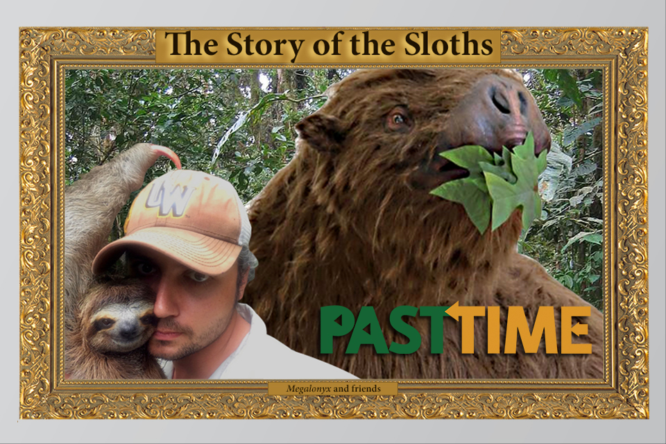 Episode 33 – The Story of the Sloth